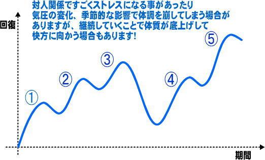 回復曲線波ありパターン